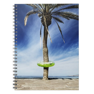 Large palm tree on a sandy beach with inflatable notebook