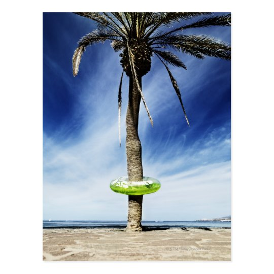 Large palm tree on a sandy beach with