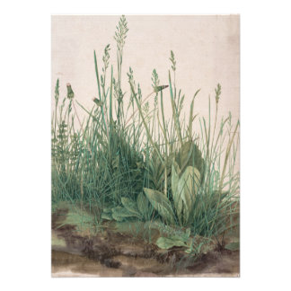 Large Piece of Turf by Albrecht Durer Announcement