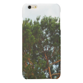 Large Pine Tree iPhone Case iPhone 6 Plus Case