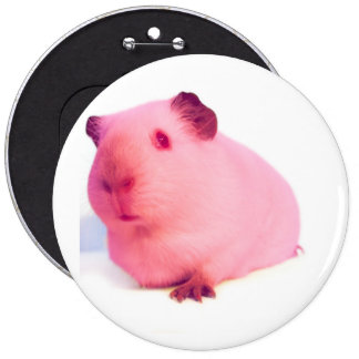 Large pink guinea pig button