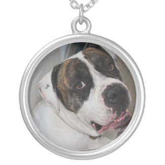 Large Plated Money Round Collar has to personalize Silver Plated Necklace