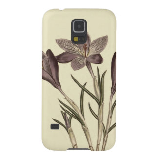 Large Purple Spring Crocus Botanical Illustration Cases For Galaxy S5