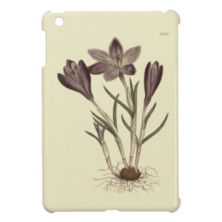 Large Purple Spring Crocus Botanical Illustration Cover For The iPad Mini