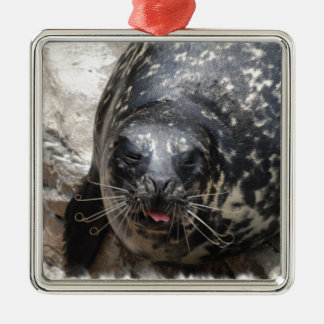 Large Seal Ornament