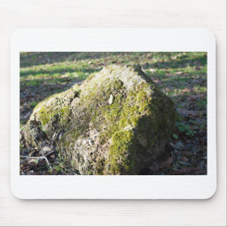 Large stone mossy boulder at  forest lawn mouse pad