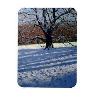 Large Tree Snow Calke Abbey Rectangular Photo Magnet