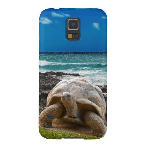 Large turtle at the sea edge galaxy s5 covers