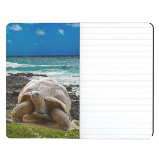 Large turtle at the sea edge journal