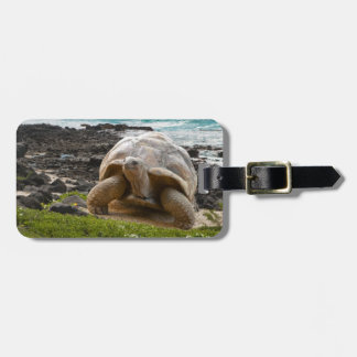 Large turtle at the sea edge luggage tag