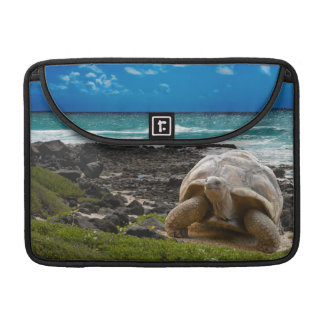 Large turtle at the sea edge sleeve for MacBooks