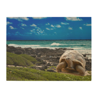 Large turtle at the sea edge wood wall art