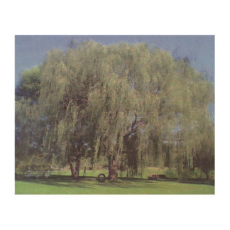Large willow tree wood prints
