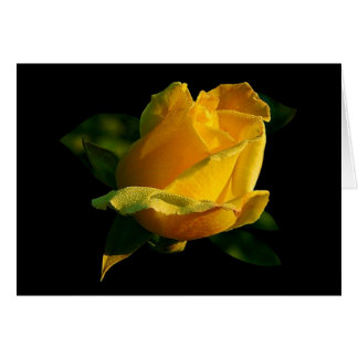 Large Yellow Rose Card