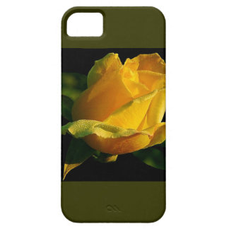 Large Yellow Rose iPhone 5 Covers