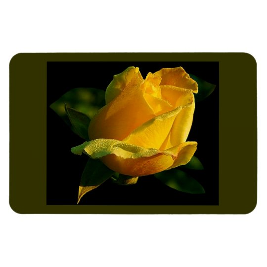 Large Yellow Rose Rectangular Photo Magnet