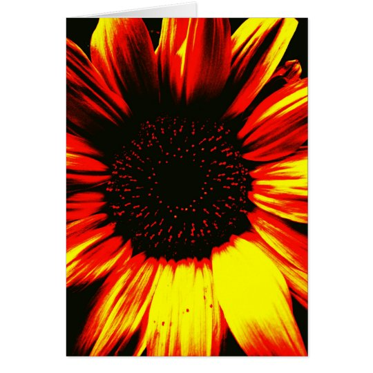 large yellow sunflower photographic art original card