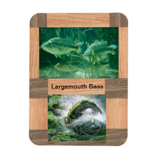 largemouth bass refrigerator magnet