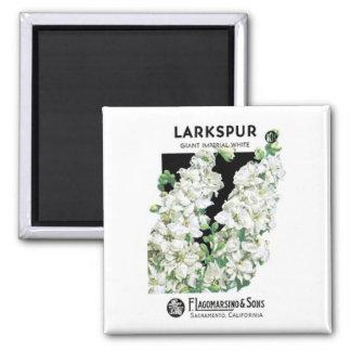 Larkspur, Giant Imperial White, F. Lagomarsino & S Square Magnet