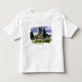 Larnach Castle, Otago Peninsula, Dunedin, Toddler T-Shirt