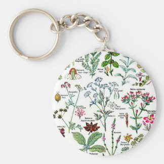 Larousse Digestive Plants Painting Basic Round Button Key Ring