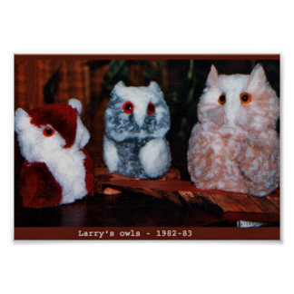 Larry's Handcrafted Owls Poster