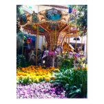 Las Vegas Botanical Garden Postcard