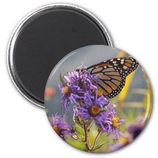 Last Monarch Butterfly 6 Cm Round Magnet
