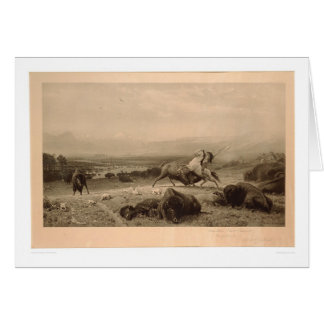 Last of the Buffalo Bierstadt (0137A) - Unrestored Greeting Card