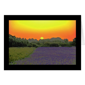 Last sunrise greeting card