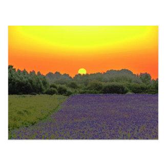 Last sunrise postcard