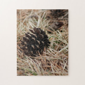 Late Winter Pine Cones Jigsaw Puzzle