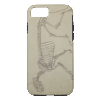 Lateral View of a Tiger Skeleton, finished study f iPhone 8/7 Case