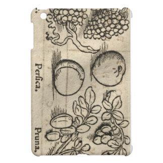 Latin fruit iPad mini covers