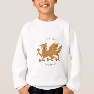 Latin mottos and heraldry sweatshirt