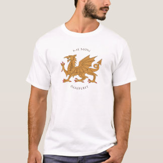 Latin mottos and heraldry T-Shirt
