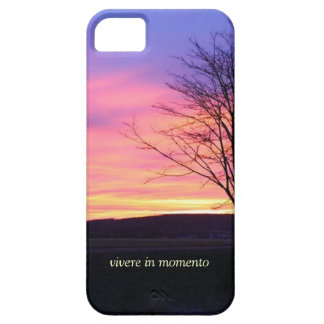 Latin Quote LIve in the Moment iPhone 5 Case