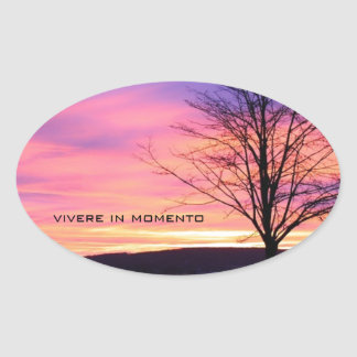 Latin Quote LIve in the Moment Oval Sticker