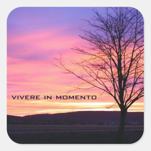 Latin Quote LIve in the Moment Square Sticker