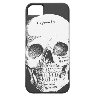 Latin Skull Goth iPhone CAse