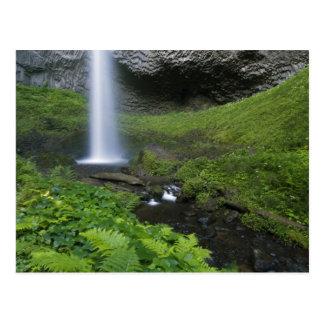 Latourell Falls, Columbia River Gorge, Oregon, Postcard