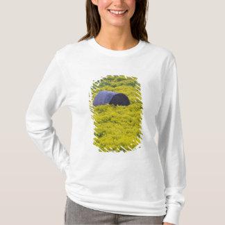 Latvia, Northeastern Latvia, Vidzeme Region, 2 T-Shirt