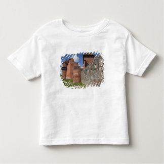 Latvia, Northeastern Latvia, Vidzeme Region, 2 Toddler T-Shirt