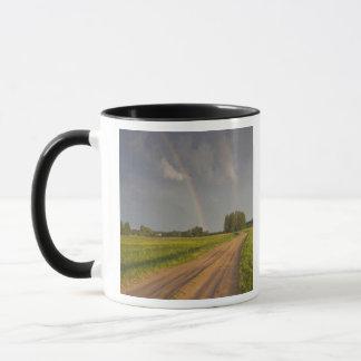 Latvia, Northeastern Latvia, Vidzeme Region, 4 Mug