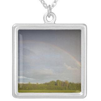 Latvia, Northeastern Latvia, Vidzeme Region, 5 Silver Plated Necklace