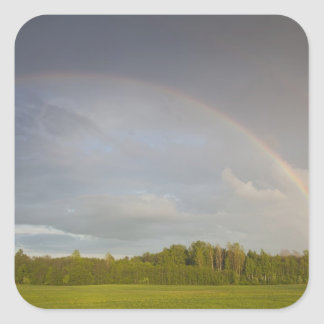 Latvia, Northeastern Latvia, Vidzeme Region, 5 Square Sticker