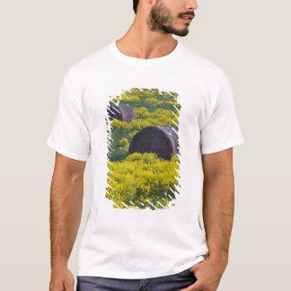 Latvia, Northeastern Latvia, Vidzeme Region, T-Shirt