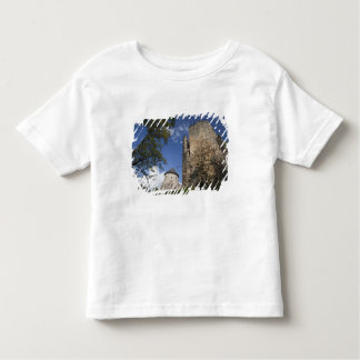 Latvia, Northeastern Latvia, Vidzeme Region, Toddler T-Shirt