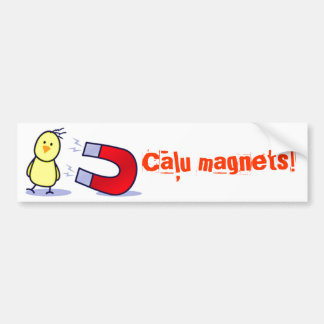 Latvian chick magnet bumper sticker