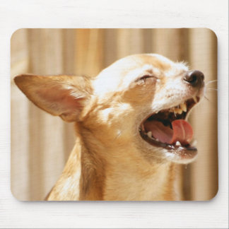 Laughing Chihuahua Mouse Mat